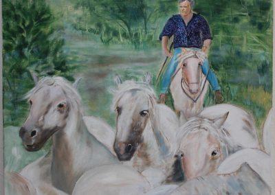 Hvide heste fra La Camarque, Sydfrankrig
